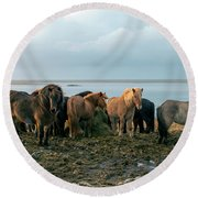 Horses In Iceland Round Beach Towel