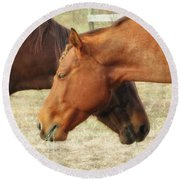 Horses In Sinc Round Beach Towel by MTBobbins Photography