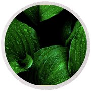 Hostas After The Rain I Round Beach Towel