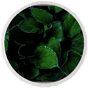 Hostas After The Rain II Round Beach Towel