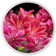 Hot Glowing Pink Delight Of Flowers Round Beach Towel