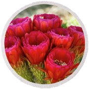 Round Beach Towel featuring the photograph Hot Pink Torch Cactus Bouquet  by Saija Lehtonen