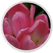 Hot Pink Tulip Round Beach Towel