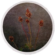 Round Beach Towel featuring the photograph Hot Summer Victims by Randi Grace Nilsberg