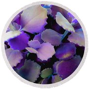 Hothouse Succulents Round Beach Towel