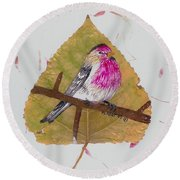 House Finch Round Beach Towel