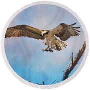 Housekeeping Osprey Art Round Beach Towel