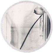 Houseplant #5147 Round Beach Towel by Andrey Godyaykin