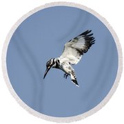 Hovering Of White Pied Kingfisher Round Beach Towel