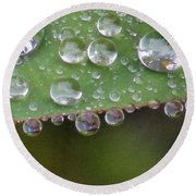 How Many Raindrops Can A Leaf Holds. Round Beach Towel
