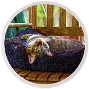 Round Beach Towel featuring the photograph How My Cat Looks When I Am On Acid by John Kolenberg