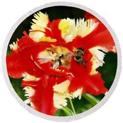 Round Beach Towel featuring the photograph How Sweet It Is by Patricia Griffin Brett