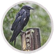 Humbled Crow Round Beach Towel