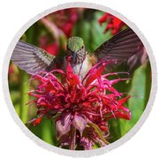 Hummingbird At Eagles Nest Round Beach Towel