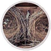 Humming Bird Nests Round Beach Towel