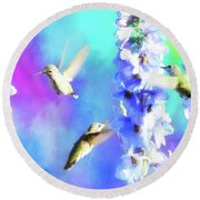Humming Bird Trio Round Beach Towel by Suzanne Handel