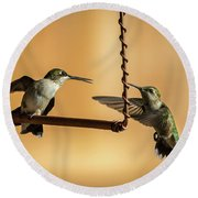 Humming Birds Round Beach Towel