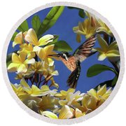 Hummingbird 01 Round Beach Towel