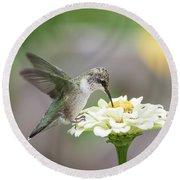 Hummingbird 2016-2 Round Beach Towel