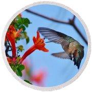Hummingbird Acrobat II Round Beach Towel