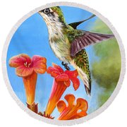 Hummingbird And A Trumpet Vine 2 Round Beach Towel by Phyllis Beiser