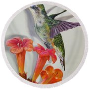 Hummingbird And A Trumpet Vine Round Beach Towel