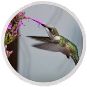 Hummingbird And Agastache Round Beach Towel by Kathy Eickenberg