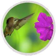 Hummingbird And Flower Round Beach Towel