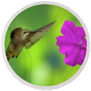 Hummingbird And Flower Round Beach Towel