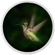 Hummingbird B Round Beach Towel