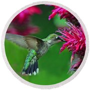 Round Beach Towel featuring the photograph Hummingbird Gathering Nectar by Rodney Campbell