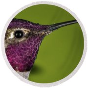 Round Beach Towel featuring the photograph Hummingbird Head Shot With Raindrops by William Lee