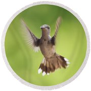 Hummingbird Hello There Round Beach Towel