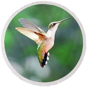 Round Beach Towel featuring the photograph Hummingbird Hovering by Meta Gatschenberger