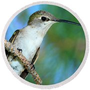 Hummingbird I Round Beach Towel