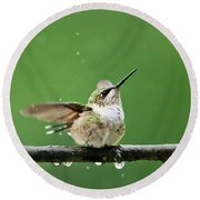Hummingbird In The Rain Round Beach Towel