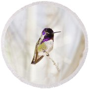 Hummingbird Larger Background Round Beach Towel