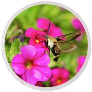 Round Beach Towel featuring the photograph Hummingbird Moth by Christina Rollo