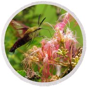 Round Beach Towel featuring the photograph Hummingbird Moth by Phyllis Beiser
