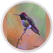 Hummingbird On A Stick Round Beach Towel by Tom Janca