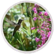 Hummingbird On Perry's Penstemon Round Beach Towel by Saija  Lehtonen