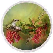 Hummingbird Paradise Round Beach Towel