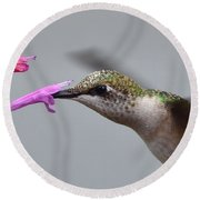 Hummingbird Profile Round Beach Towel by Kathy Eickenberg