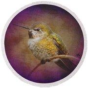 Hummingbird Rufous Round Beach Towel