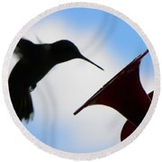 Round Beach Towel featuring the photograph Hummingbird Silhouette by Sandi OReilly