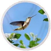 Hummingbird Springtime Round Beach Towel by Christina Rollo