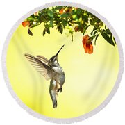 Hummingbird Under The Floral Canopy Round Beach Towel