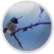 Hummingbird11 Round Beach Towel