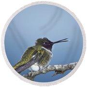 Hummingbird12 Round Beach Towel