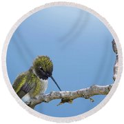 Hummingbird13 Round Beach Towel by Loni Collins